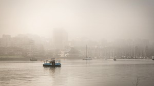 Foggy Morning out on False Creek